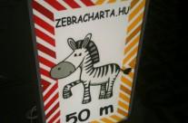 Zebracharta